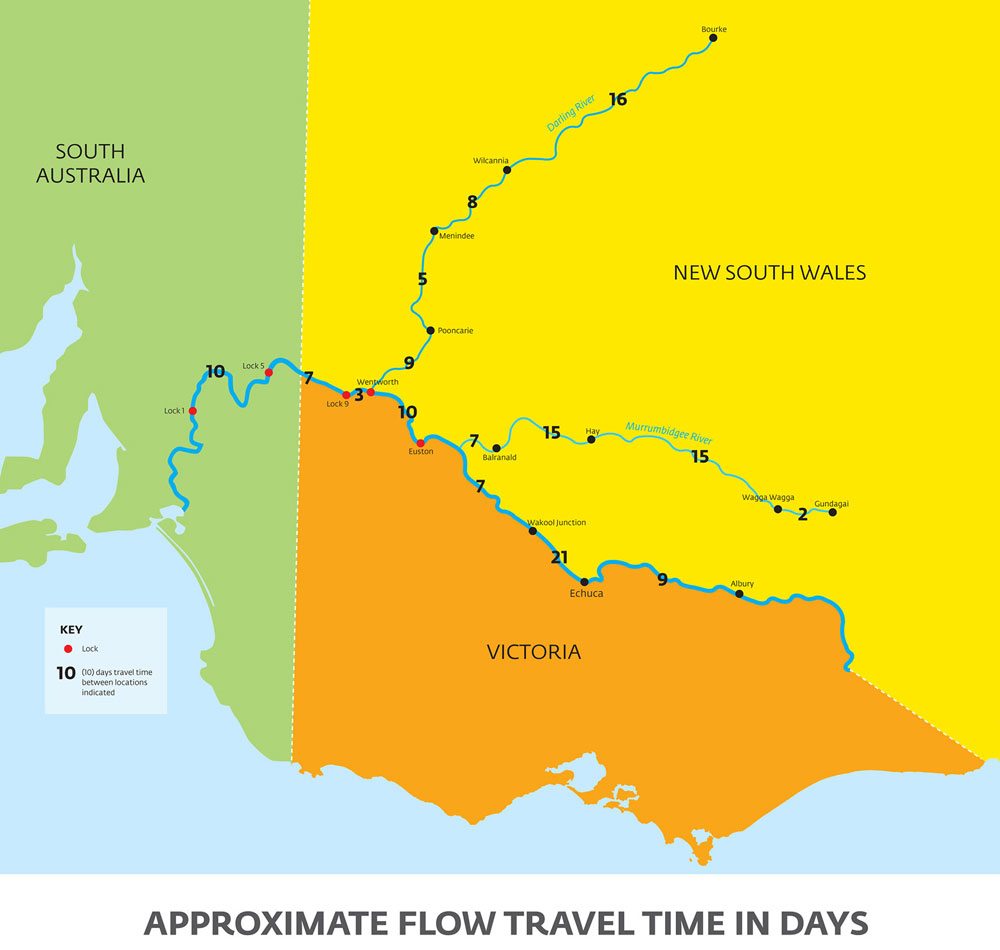 The River Murray system indicating approximate flow travel time in days.