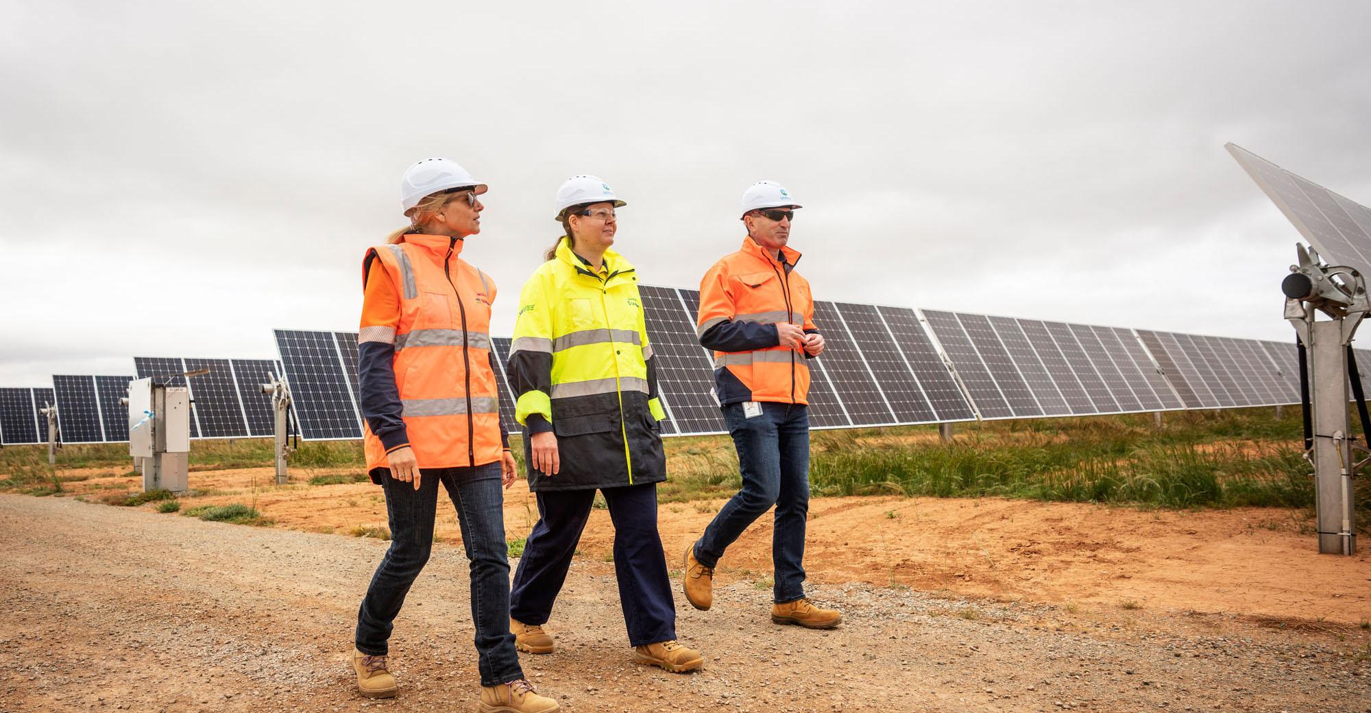 solar-panels-image
