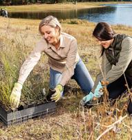 SA Water team planting trees at Myponga Reservoir